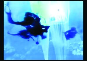 Planet Ocean8
